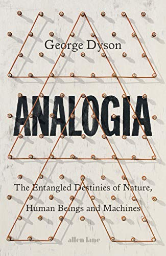 Analogia: The Entangled Destinies of Nature, Human Beings and Machines von Penguin Books Ltd (UK)