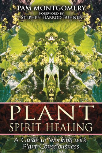 Plant Spirit Healing: A Guide to Working with Plant Consciousness von Bear & Company