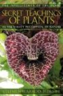 The Secret Teachings of Plants: The Intelligence of the Heart in the Direct Perception of Nature: The Intelligence of the Heart in Direct Perception of Nature von Bear & Company