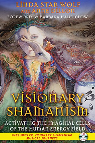 Visionary Shamanism: Activating the Imaginal Cells of the Human Energy Field von Bear & Company