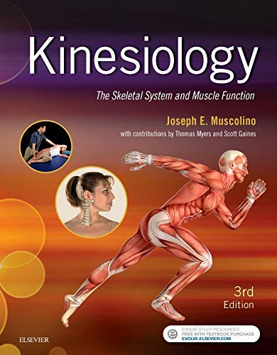 Kinesiology: The Skeletal System and Muscle Function von Mosby