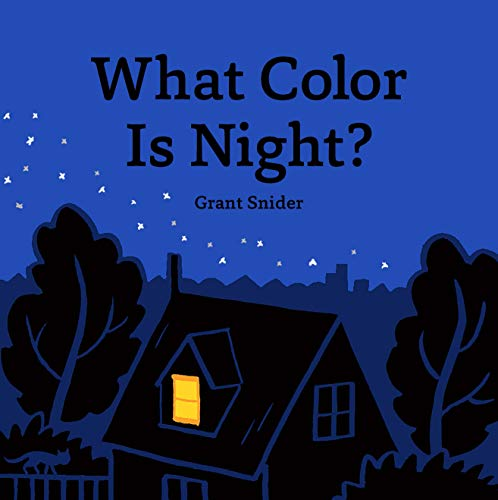 Snider, G: What Color Is Night? von Chronicle Books