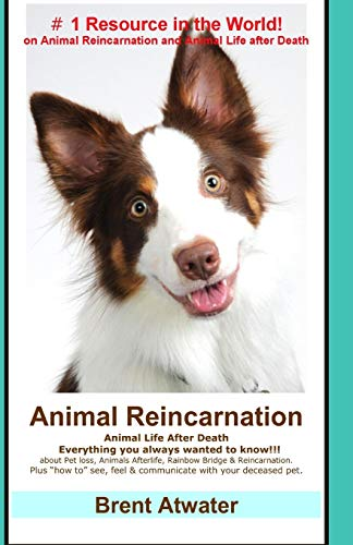Animal Reincarnation: Everything You Always Wanted to Know! about Pet Reincarnation plus how to techniques to see, feel & communicate with your deceased pet von Createspace