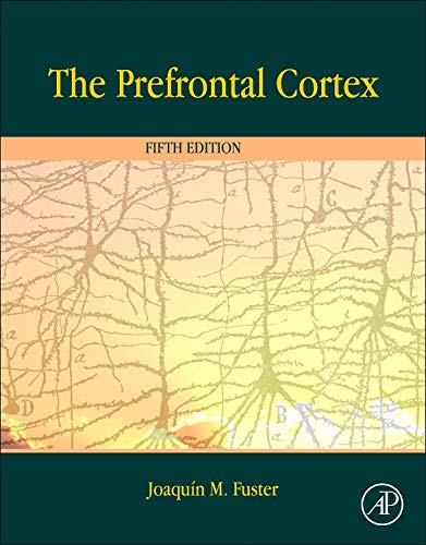 The Prefrontal Cortex von Elsevier LTD, Oxford