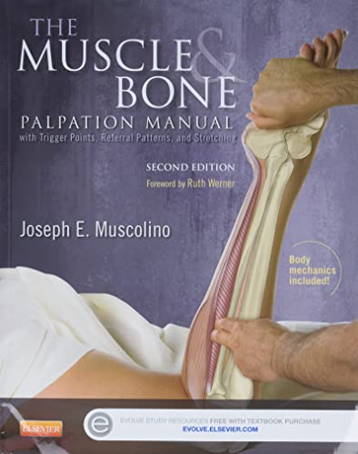 The Muscle and Bone Palpation Manual with Trigger Points, Referral Patterns and Stretching von Mosby