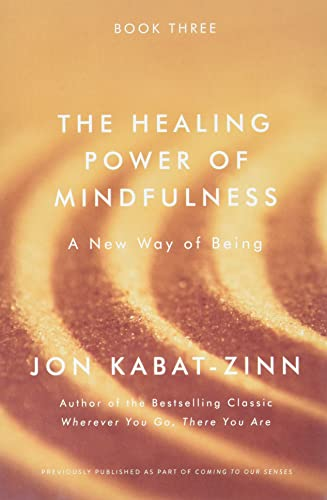 The Healing Power of Mindfulness: A New Way of Being von Hachette Books