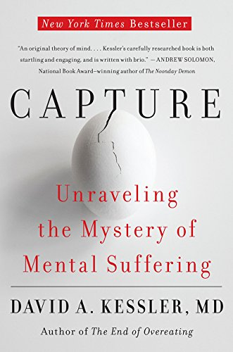 Capture: Unraveling the Mystery of Mental Suffering von Harper Perennial
