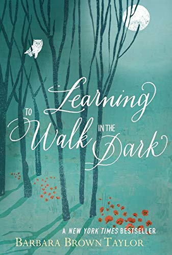 Learning to Walk in the Dark von HarperOne