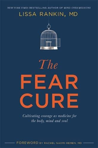 The Fear Cure: Cultivating Courage as Medicine for the Body, Mind and Soul von Hay House Uk