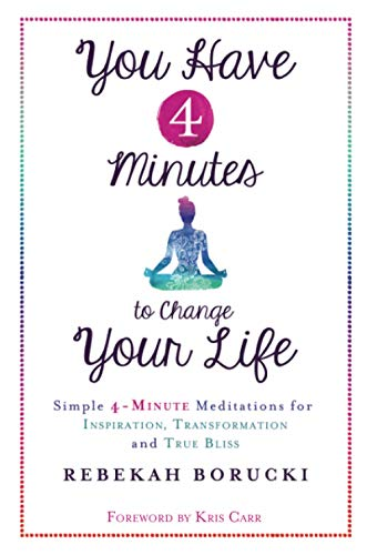 You Have 4 Minutes to Change Your Life: Simple 4-Minute Meditations for Inspiration, Transformation and True Bliss von Hay House Uk
