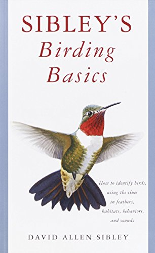 Sibley's Birding Basics: How to Identify Birds, Using the Clues in Feathers, Habitats, Behaviors, and Sounds von Knopf