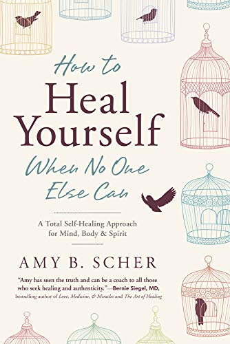Scher, A: How to Heal Yourself When No One Else Can: A Total Self-Healing Approach for Mind, Body, and Spirit von Llewellyn Publications
