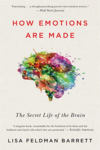 How Emotions Are Made: The Secret Life of the Brain von Mariner Books