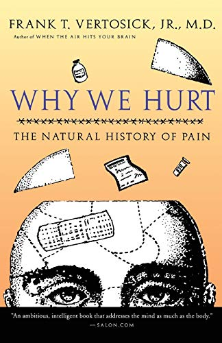 Why We Hurt: The Natural History of Pain von Mariner Books