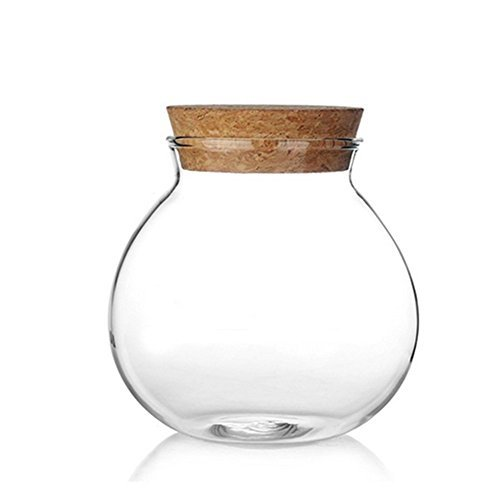 Milopon Airtight Canister Luftdichter Kanister Clear Glass with Holz Lid Storage Jar for Candy Tea Cookie Nuts Cereal 570ml von Milopon
