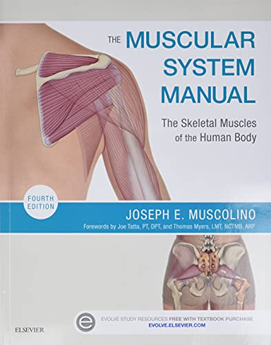 The Muscular System Manual: The Skeletal Muscles of the Human Body von Mosby