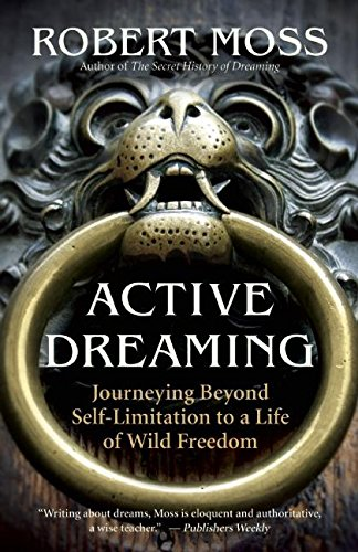 Active Dreaming: Journeying Beyond Self-Limitation to a Life of Wild Freedom von New World Library