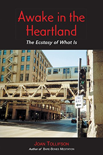 Awake in the Heartland: The Ecstasy of What Is von Non-Duality Press