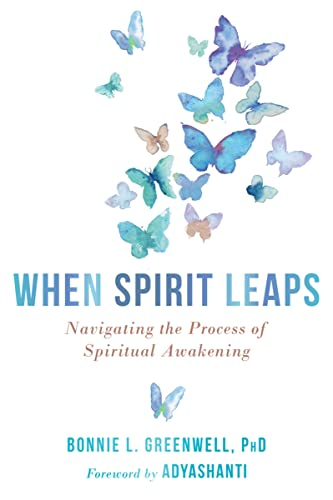 When Spirit Leaps: Navigating the Process of Spiritual Awakening von Non-Duality Press