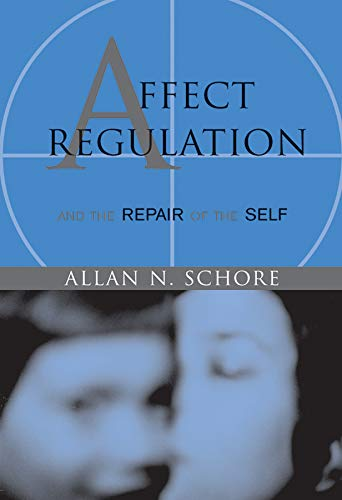 Affect Regulation and the Repair of the Self (Norton Series on Interpersonal Neurobiology) von Norton & Company