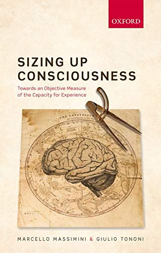 Sizing up Consciousness von OUP Oxford