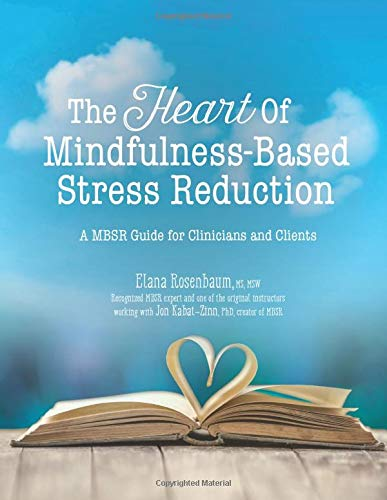 The Heart of Mindfulness-Based Stress Reduction: a MBSR Guide for Clinicians and Clients von PESI Publishing & Media