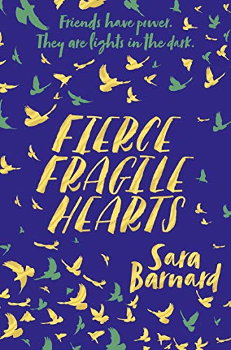 Fierce Fragile Hearts von Pan Macmillan