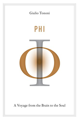 Phi: A Voyage from the Brain to the Soul von Pantheon