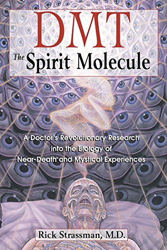 DMT: The Spirit Molecule: A Doctor's Revolutionary Research into the Biology of Near-Death and Mystical Experiences von Park Street Press