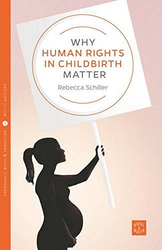 Why Human Rights in Childbirth Matter (Pinter & Martin Why It Matters, Band 9) von Pinter & Martin Ltd.