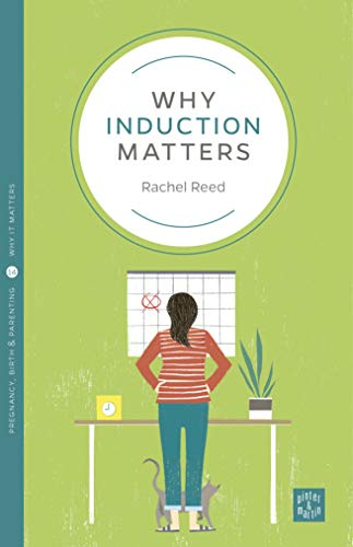 Why Induction Matters (Pinter & Martin Why It Matters) von Pinter & Martin Ltd