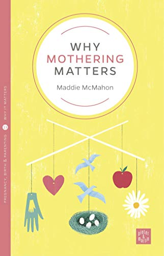 Why Mothering Matters (Pinter & Martin Why It Matters) von Pinter & Martin Ltd.
