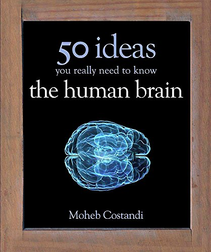 50 Human Brain Ideas You Really Need to Know (50 Ideas You Really Need to Know series) von Quercus