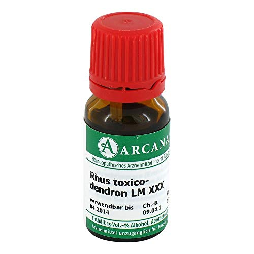 RHUS TOXICODENDRON LM 30 Dilution 10 ml Dilution von RHUS