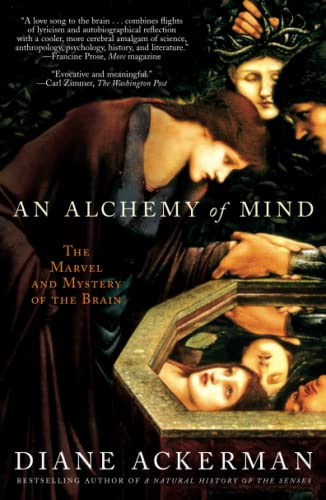 An Alchemy of Mind: The Marvel and Mystery of the Brain von Scribner