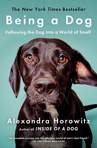 Being a Dog: Following the Dog Into a World of Smell von Scribner