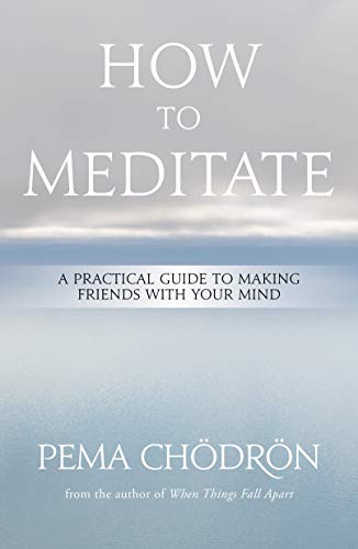 How to Meditate: A Practical Guide to Making Friends with Your Mind von Sounds True Inc