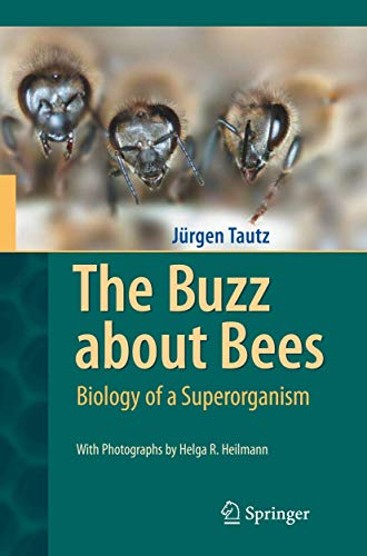 The Buzz about Bees: Biology of a Superorganism von Springer