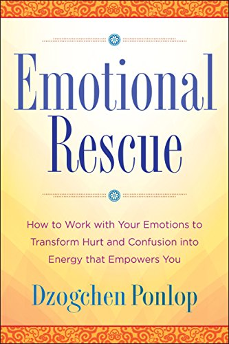 Emotional Rescue: How to Work with Your Emotions to Transform Hurt and Confusion into Energy That Empowers You von TarcherPerigee