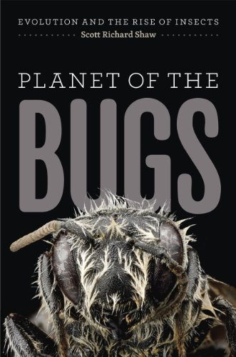 Planet of the Bugs: Evolution and the Rise of Insects von University of Chicago Press