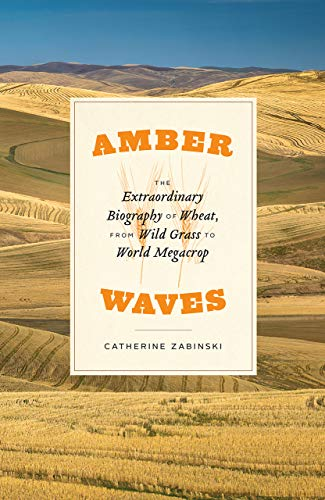 Amber Waves: The Extraordinary Biography of Wheat, from Wild Grass to World Megacrop von University of Chicago Press