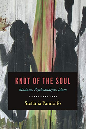 Knot of the Soul: Madness, Psychoanalysis, Islam von University of Chicago Press