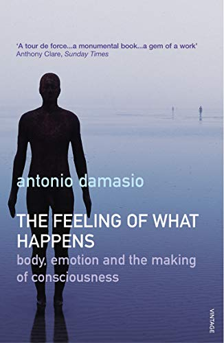 The Feeling Of What Happens: Body, Emotion and the Making of Consciousness von Vintage