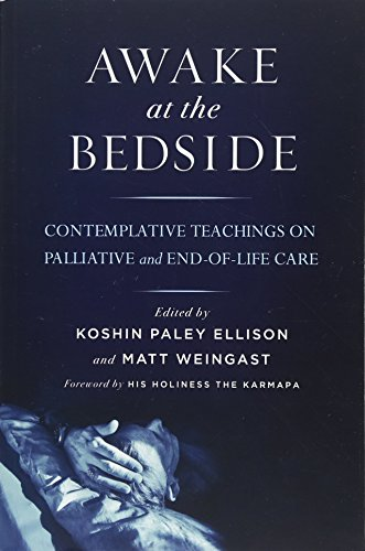 Awake at the Bedside: Contemplative Teachings on Palliative and End-of-Life Care von Wisdom Publications