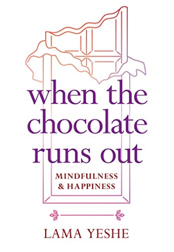 When the Chocolate Runs Out: Mindfulness & Happiness von Wisdom Publications