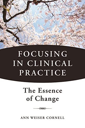 Focusing in Clinical Practice: The Essence of Change von WW Norton & Co