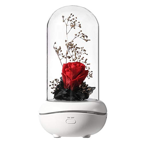 YHWW Luftbefeuchter,Aromatherapy Diffuser Eternal Rose Flower Ultrasonic Essential Oil Aroma Air Humidifiers 7 Color LED Night light Office Home Car,red,CHINA von YHWW