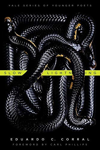 Slow Lightning (Yale Series of Younger Poets, Band 106) von Yale University Press