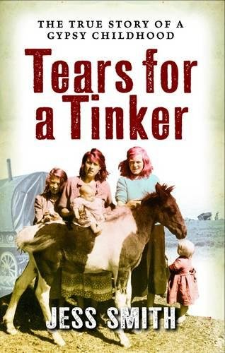 Tears for a Tinker (Jessie's Journey, Band 3) von imusti
